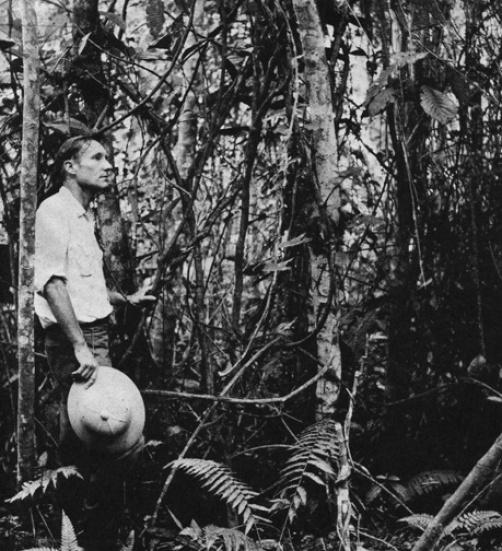 Foto 3 - William Burroughs en Colombia